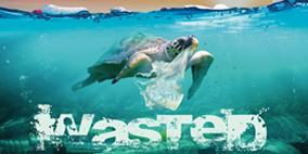 Wasted: The Global Effects of Plastic Waste in a Consumer Society