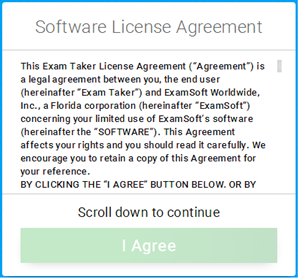 Examplify License Agreement